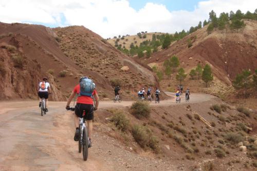 G_Mountainbike Fiets reis 1