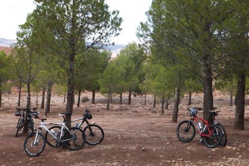 G_Mountainbike Fiets reis 6