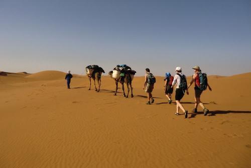 G_woestijntrekking 3
