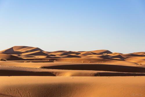 G-fotoreis Woestijn